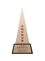 2013卓越中坚企业奖